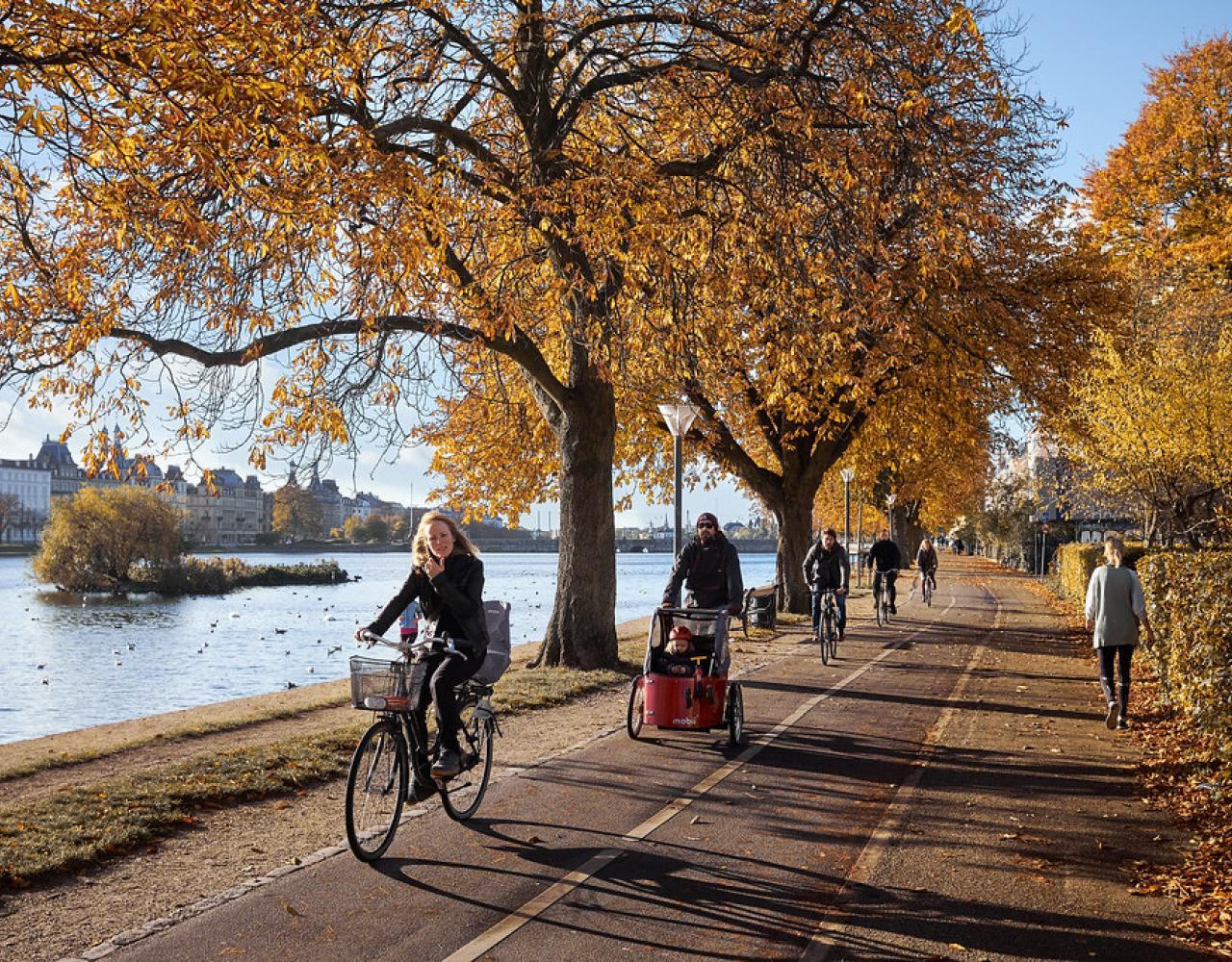 cykler søerne