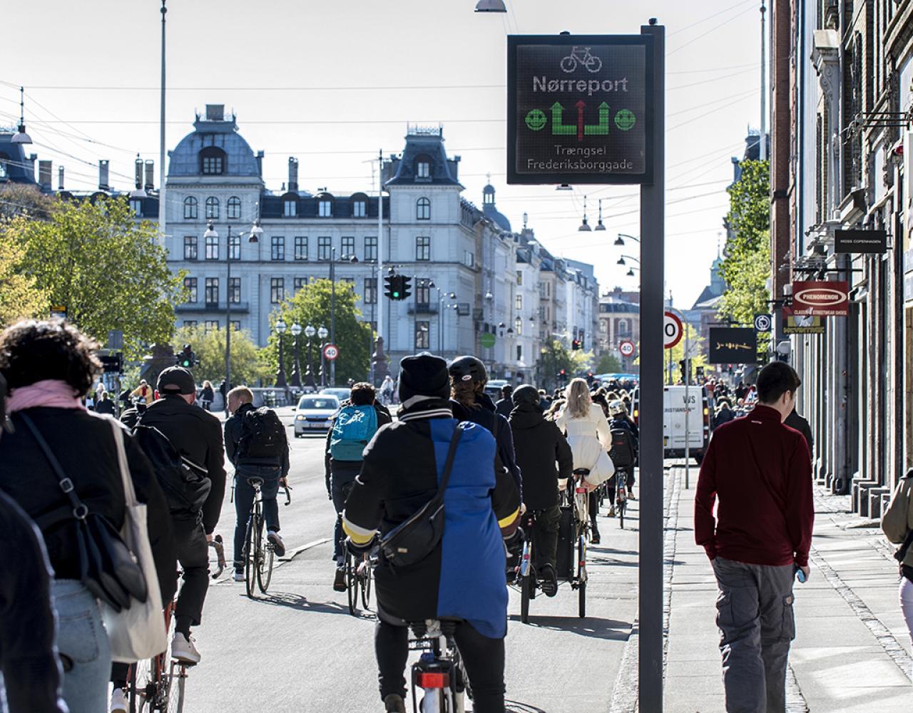 cykel informationstavle nørrebrogade