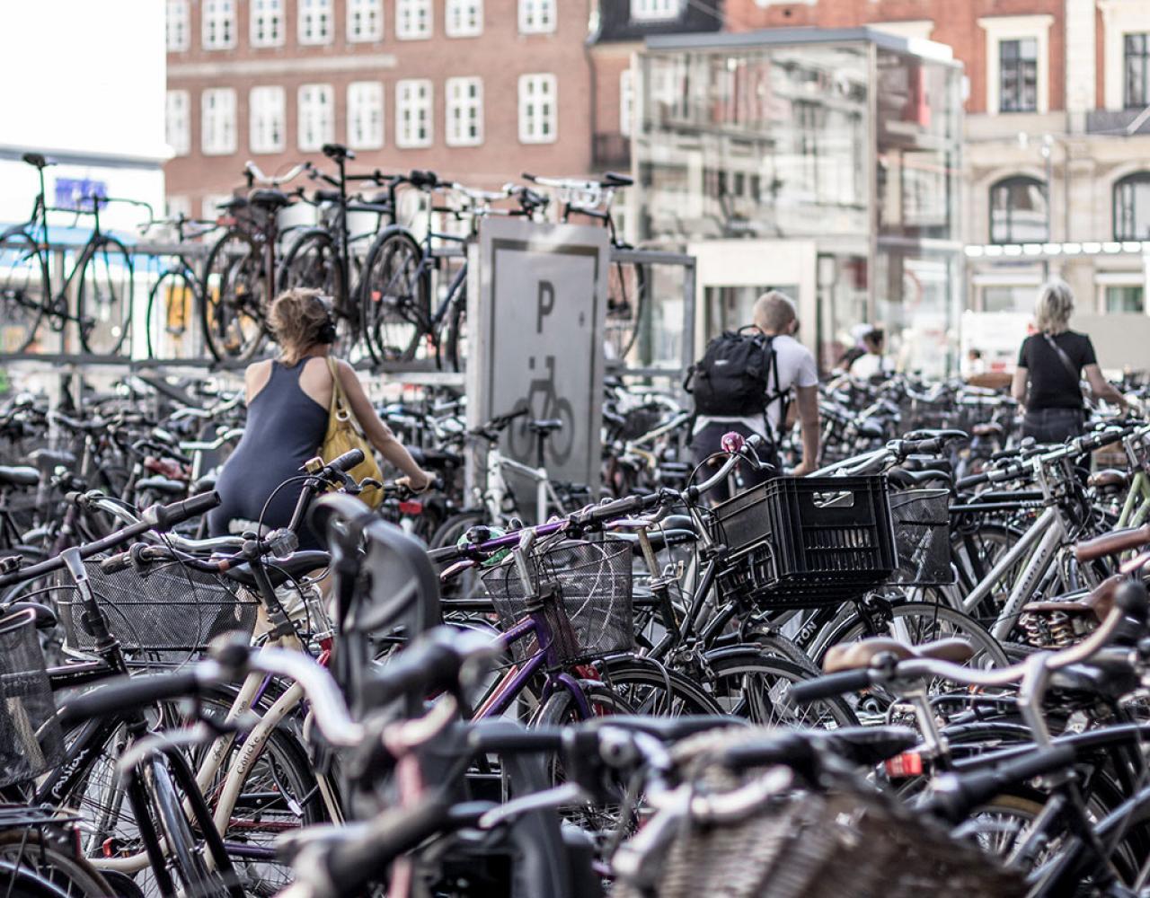 Københavns kommune vil sætte ind over for cykeltyverier