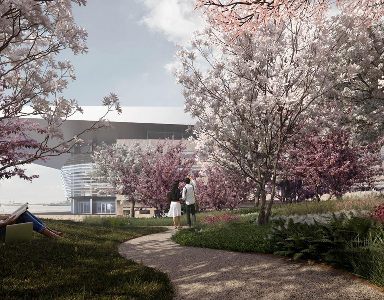 Operaparken kirsebærtræer