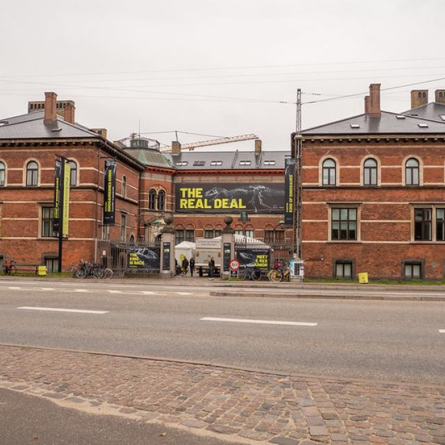 Statens Naturhistoriske Museum [Natural History Museum of Denmark]
