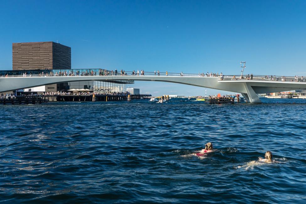 inderhavnsbroen samlet svømmere