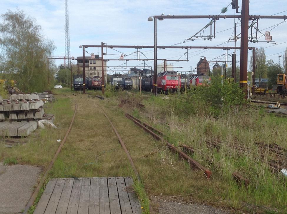 godsbaneterræn tilgroet