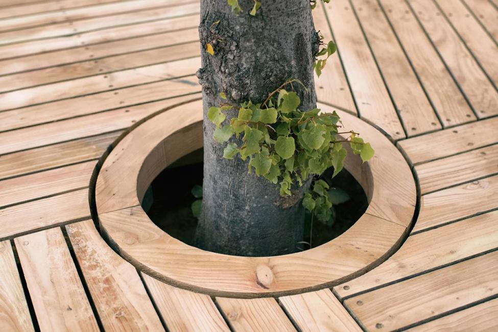 cph-ø1 lindetræ