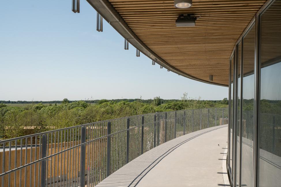 kalvebod fælled skole terrasse