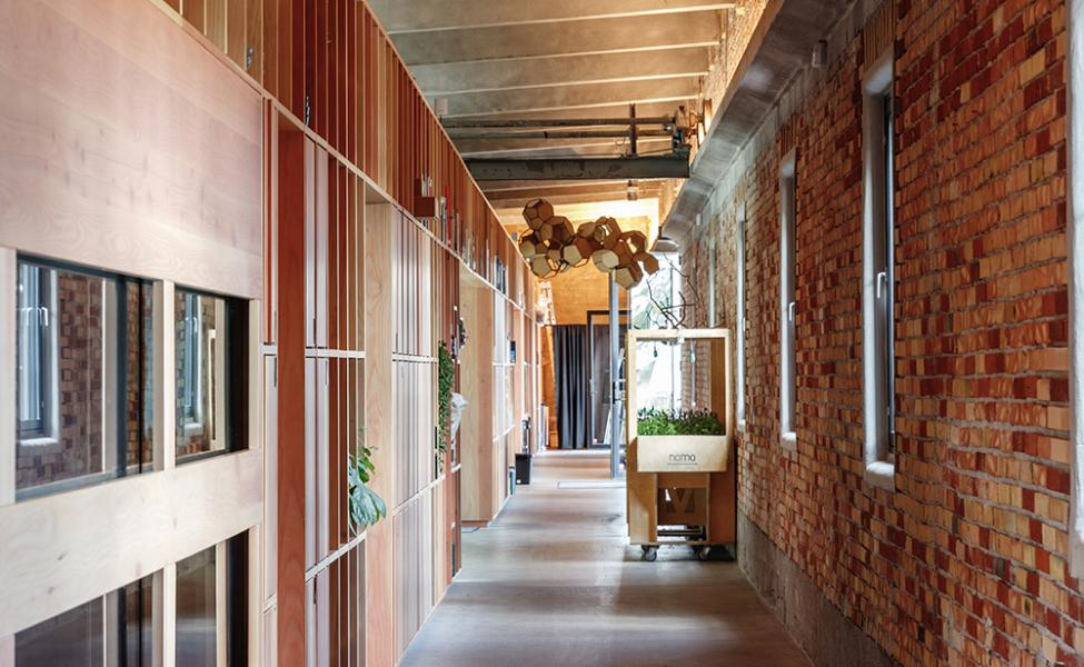 noma display hallway