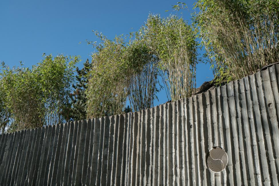 cement med bambustryk