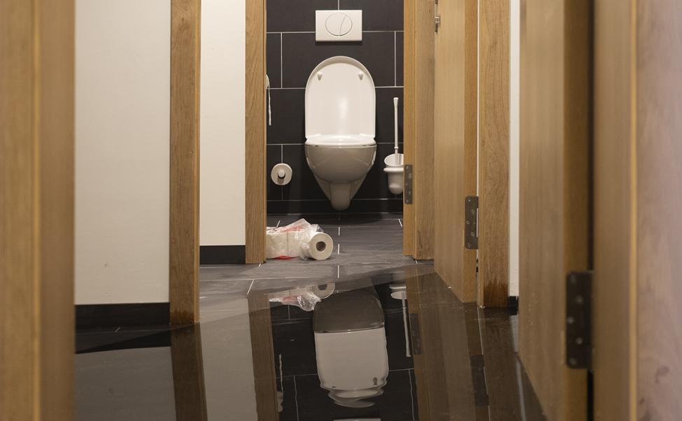 superflex toilet