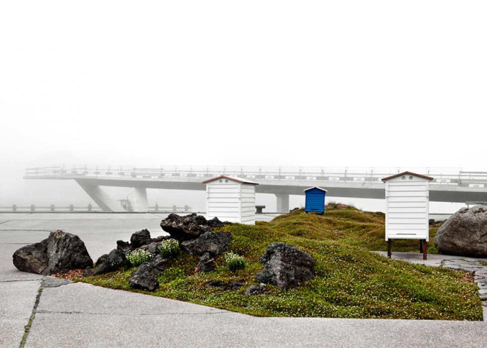Noma landskab Polyform